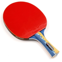 Rakietka do tenisa stołowego WINDSTORM****